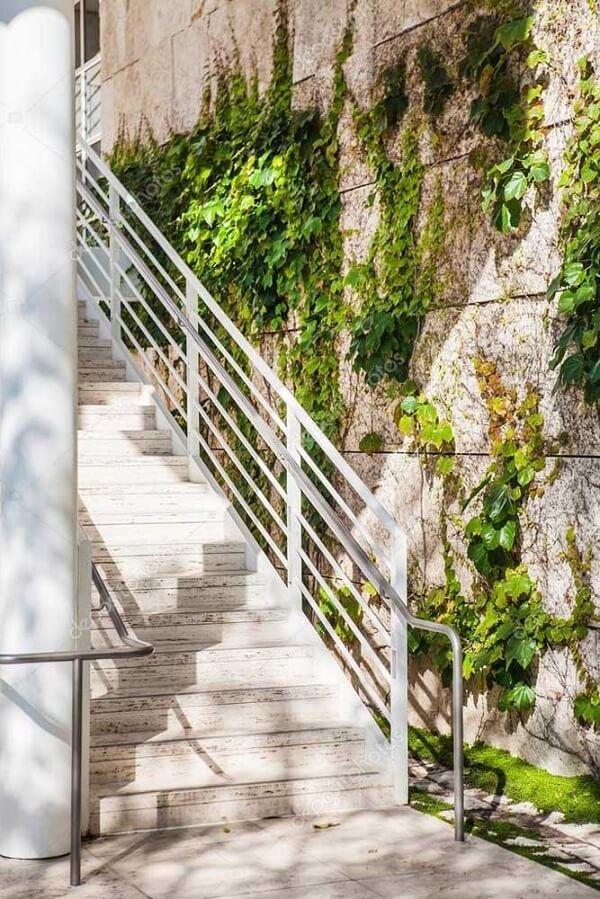 As trepadeiras se desenvolvem perto da escada
