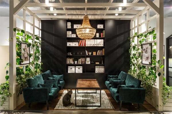 Decore a sala de estar com trepadeiras
