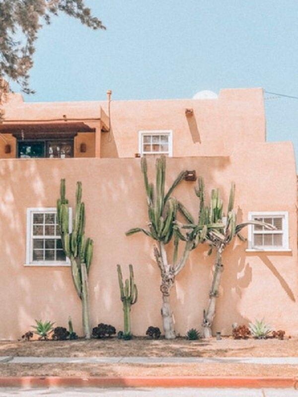 cactos para fachada de casas