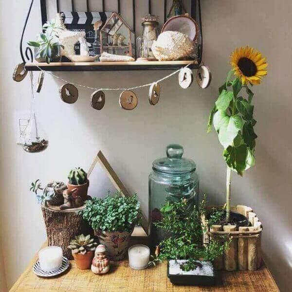 Girassol para enfeitar ambiente de casa