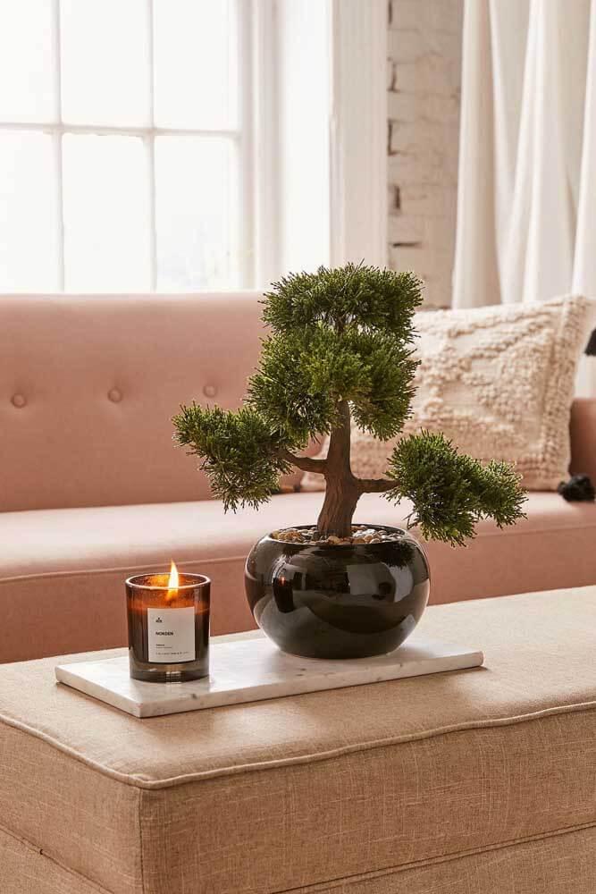Na sala de estar os Bonsais podem decorar a mesa de centro. Fonte: Pinterest