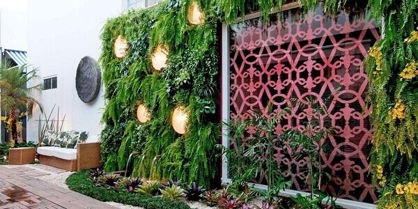 Samambaia jardim vertical