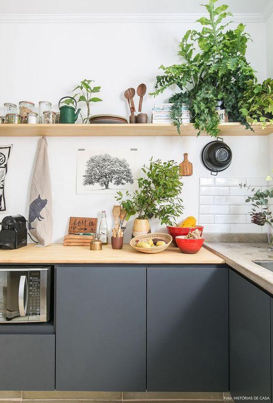 armário de cozinha - cozinha com muitas plantas