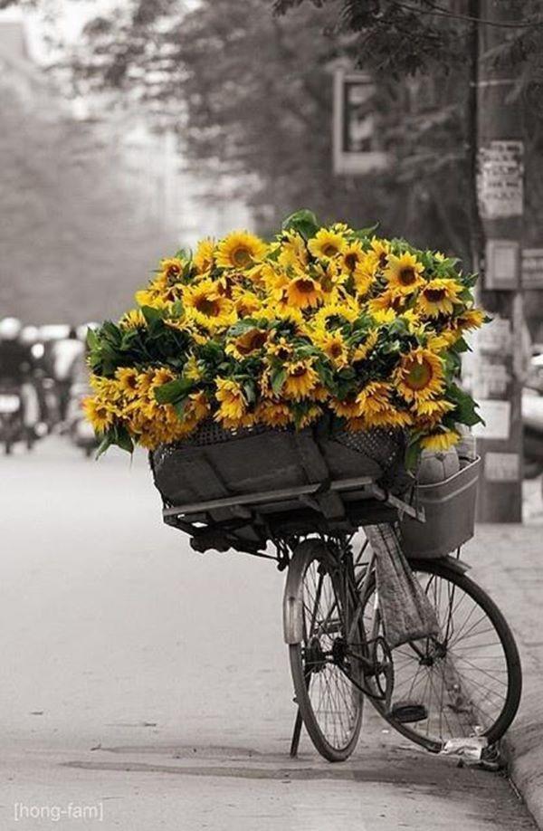 Bicicleta decorada com girassol