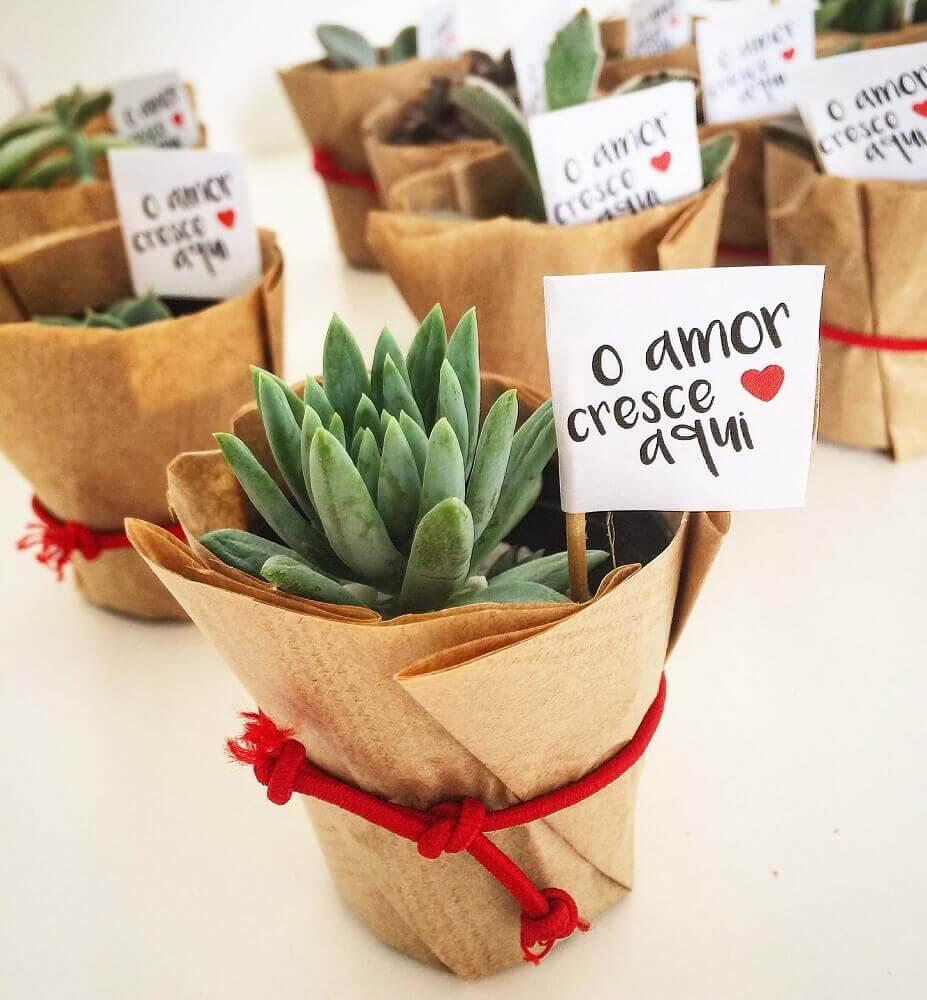 vasinhos de suculentas para casamento em casa Foto Pinterest