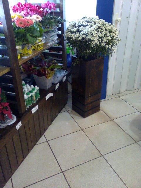 Cachepot de madeira em loja Foto de Tiago Dutra