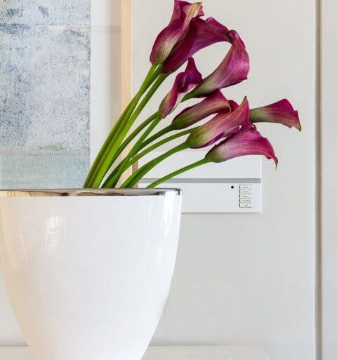 Como deixar a casa cheirosa com flores Projeto de Marilia Veiga