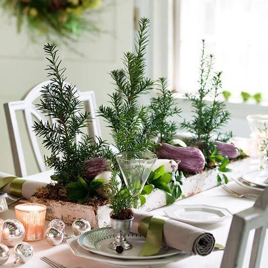Decoration of dinner table centerpiece with real plants Photo by Cuochie Cucine