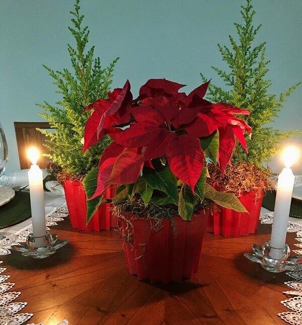 Flor de natal em centro de mesa