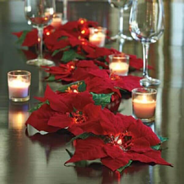 Flor de natal enfeita mesa