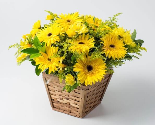Flores do campo amarelas em cesto de vime Foto de Isabela Flores