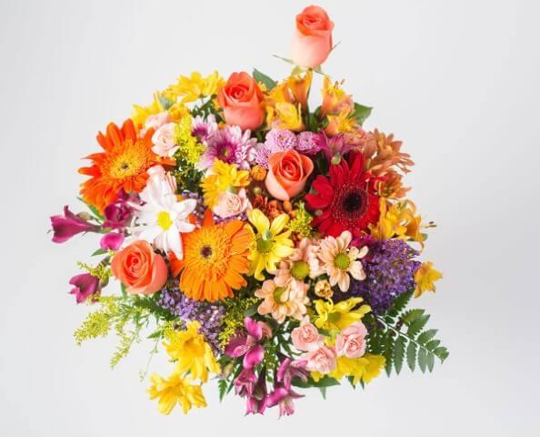Flores do campo coloridas em arranjo bem alegre Foto de Isabela Flores
