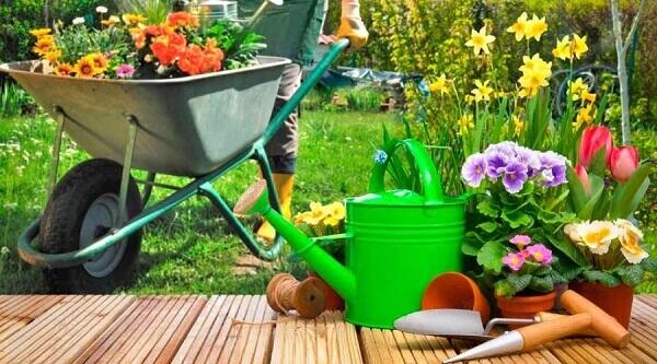 Jardinagem diversos equipamentos