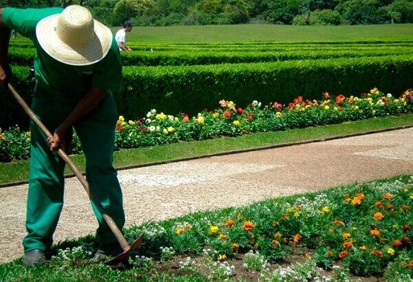 Jardinagem enxada