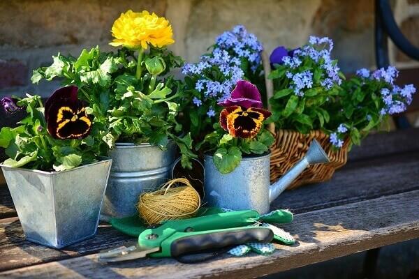 Jardinagem regadores
