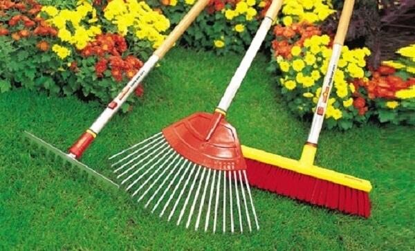Jardinagem vassouras