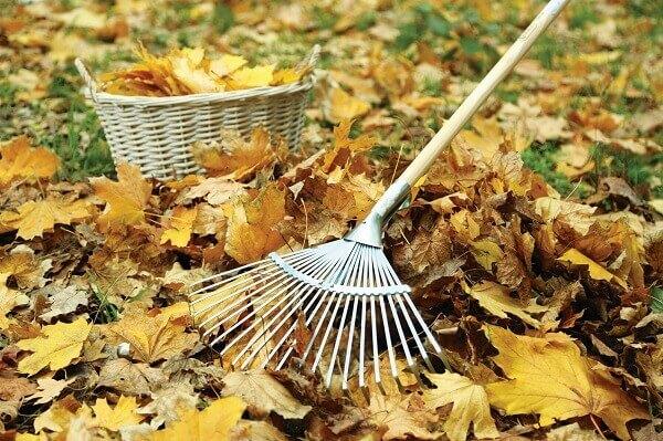 O rastelo na jardinagem retira as folhas sem estragar o gramado