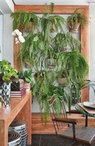 Varanda com jardim vertical de samambaias Projeto de Tetriz Arquitetura