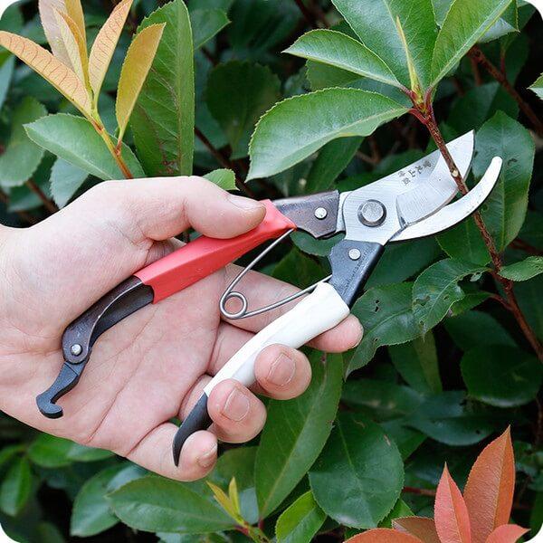 Modelo de tesoura de poda profissional para a jardinagem