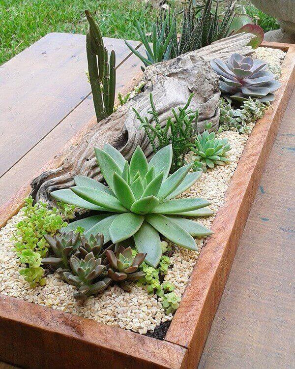 A jardineira abriga mini jardim de suculentas