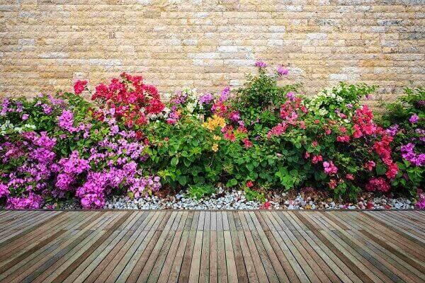 As plantas para jardim podem ser combinadas com pedras e piso de madeira