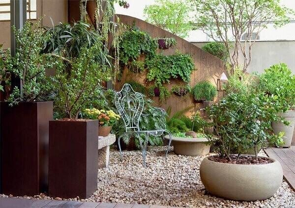 As plantas para jardim podem ter espécies aromáticas