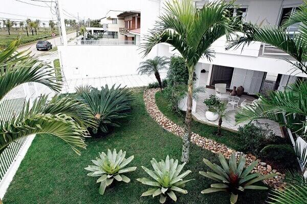 As plantas para jardim precisam de condições adequadas