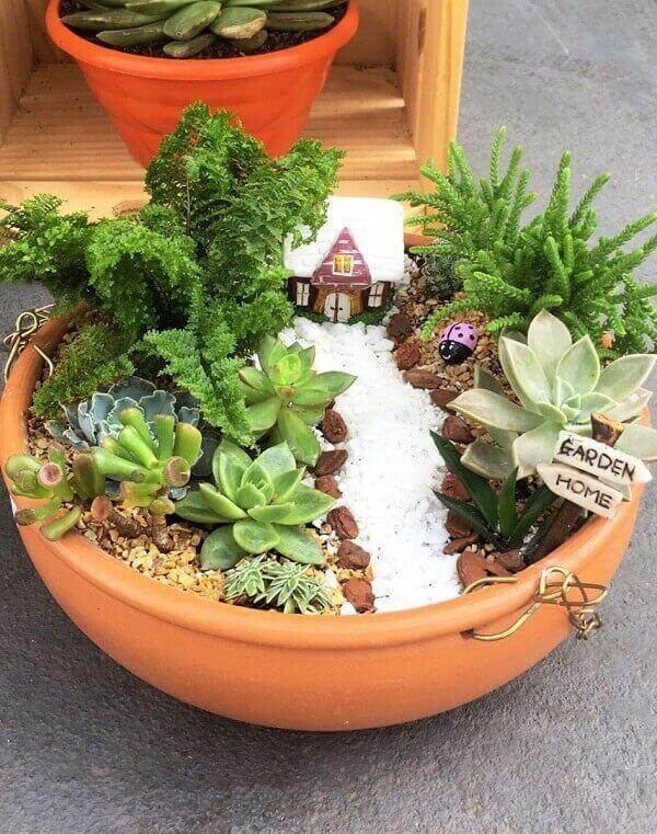 Mini jardim de suculentas e cactos podem ser feitos em vasos