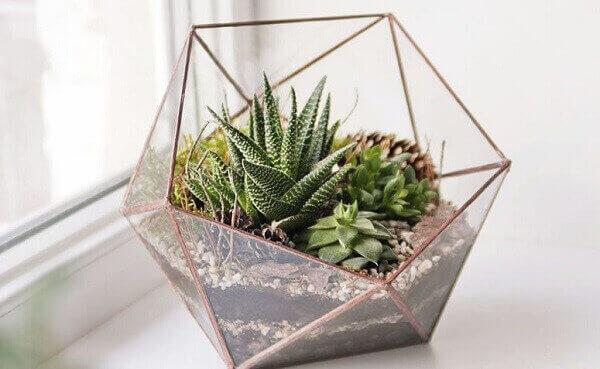 O mini jardim de suculentas foi plantado dentro de vaso transparente