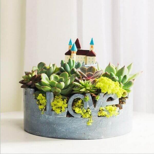 O mini jardim de suculentas foi plantado em vaso de resina