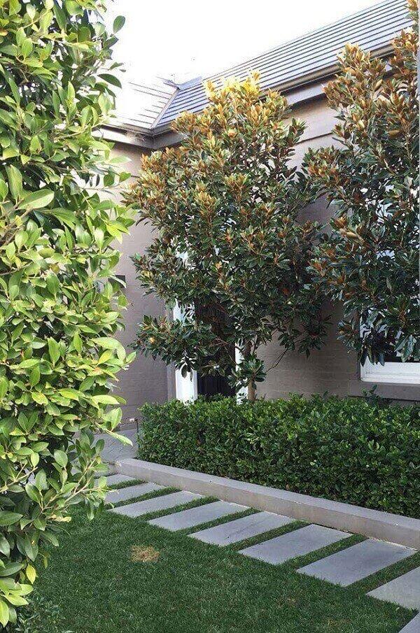 Plantas para Jardim de residência