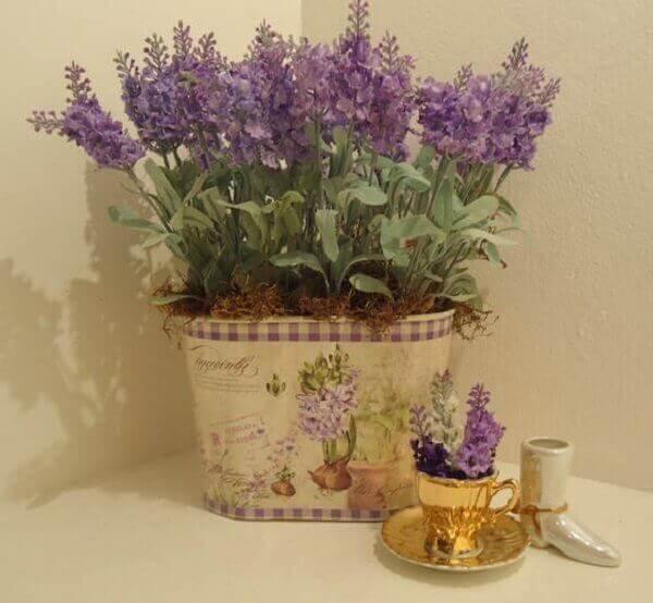 Plantas para dentro de casa Lavanda