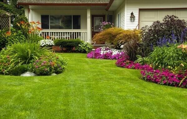 Plantas para jardim fachada de casa