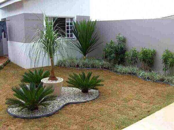 Plantas para jardim fenix