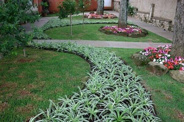 Plantas para jardim grande