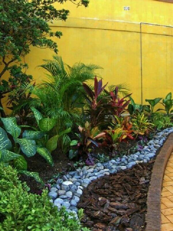 Plantas para jardim tropical
