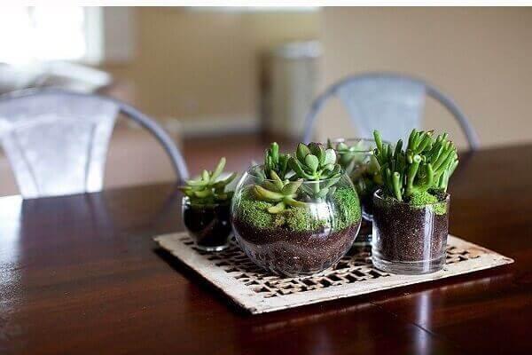 Sobre a mesa foi montado um arranjo de mini jardim de suculentas