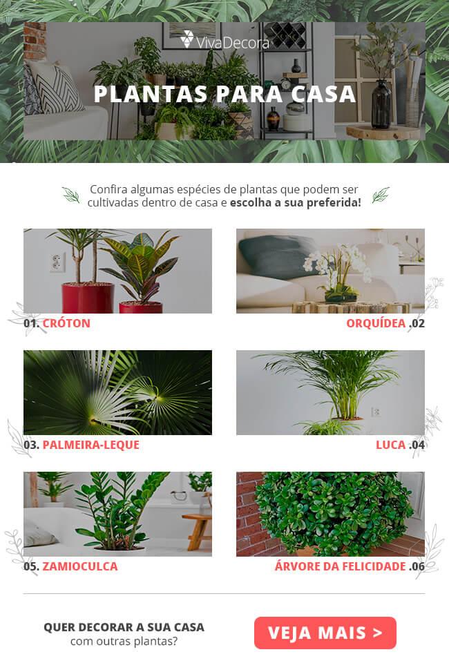 Infográfico - Plantas para Dentro de Casa