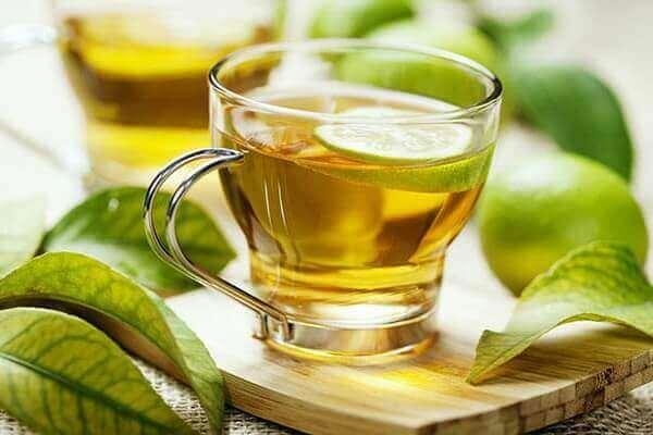 A carqueja é um dos muitos tipos de plantas medicinais utilizados devido as suas propriedades