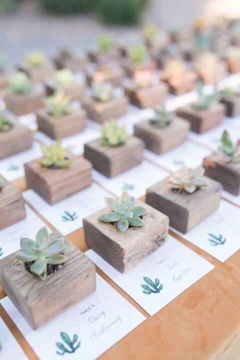 Mini suculentas em vasos de madeira como lembrancinhas de casamento Foto de Marisa Belle Photography