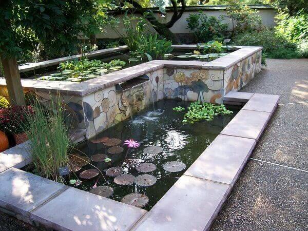 Tipos de plantas aquáticas aguapé
