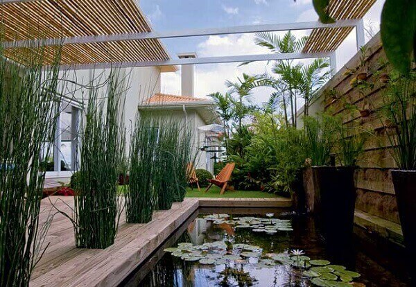 Tipos de plantas aquáticas para espelhos d'água