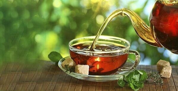 Tipos de plantas medicinais saudáveis