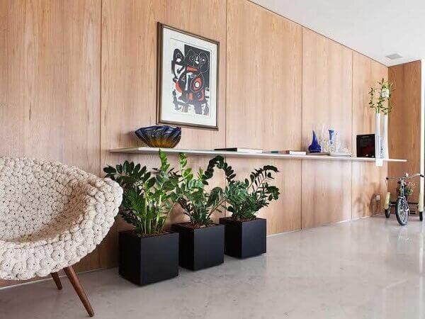 Tipos de plantas ornamentais levam beleza ao ambiente
