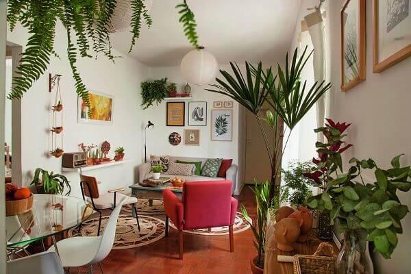 Tipos de plantas ornamentais para decorar apartamento retrô