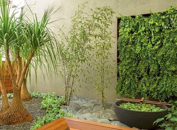 Tipos de plantas ornamentais para valorizar ambientes internos
