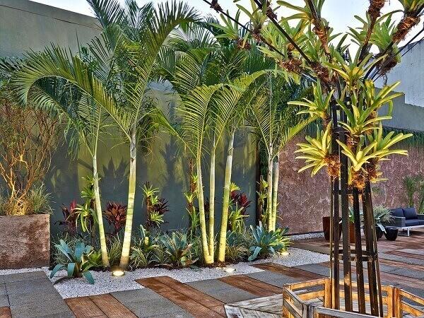Tipos de plantas ornamentais que valorizam o espaço