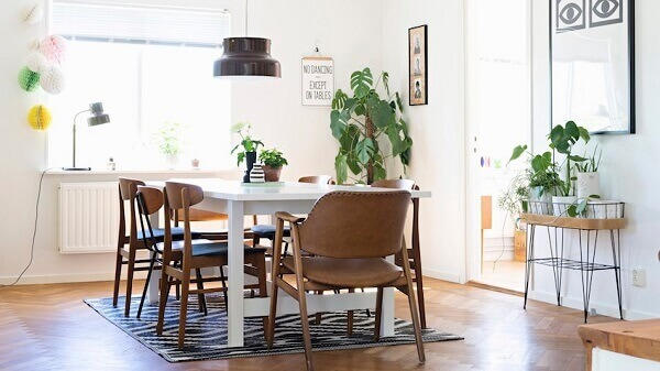 Tipos de plantas ornamentais transformam a decoração