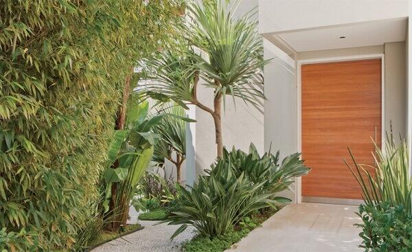 Tipos de plantas ornamentais valorizam a porta de entrada da residencia