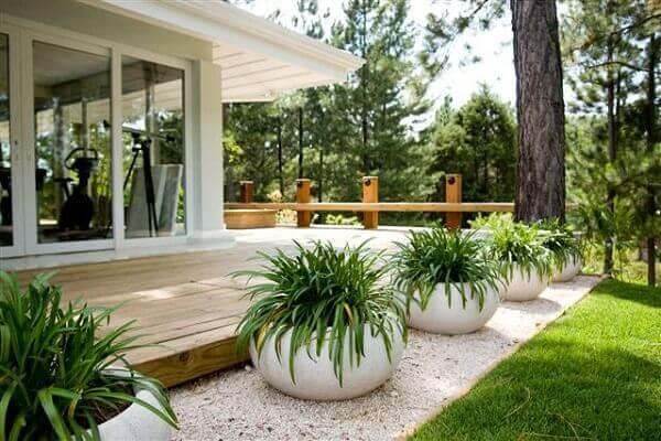 Tipos de plantas para jardim com vasos
